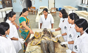 MSc in Ayurvedic Medicine (Complete study course)