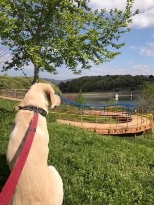正成と公園