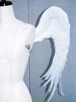 wing039-s2