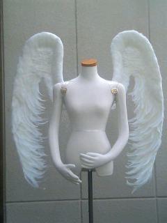 wing052