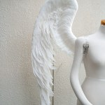 wing063-up