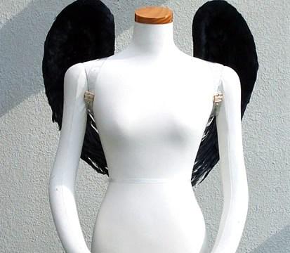wing065-f