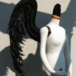 wing075-s