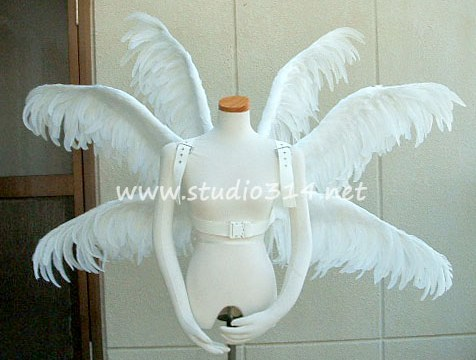 wing084