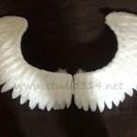 wing086-3