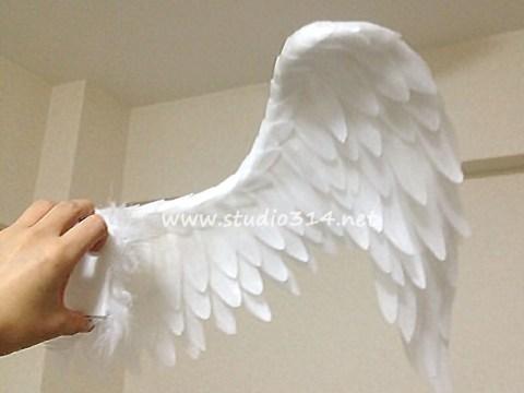 wing086