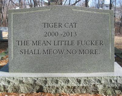 dead cat gravestone
