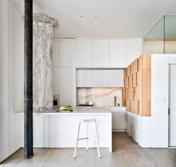 catesthill-SABO-project-doehler-brooklyn-new-york-7