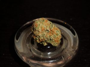 The White Marijuana Strain 8