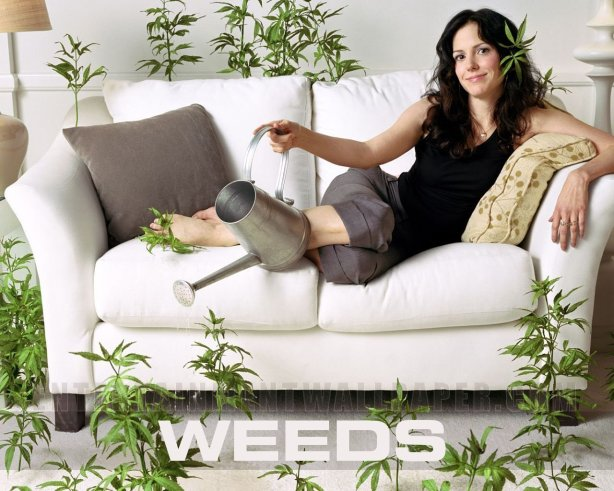 Nancy Botwin of Showtimes Weeds