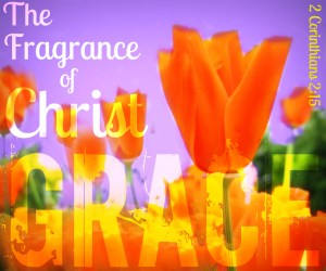 fragrance-of-christ-grace-2-corinthians-2-15 - Copy