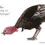 Going Paleo: Cold Turkey or Gradual Change? | stupideasypaleo.com