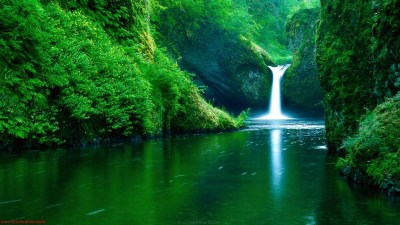 40+ Beautiful Nature Wallpapers - Style Arena