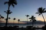 hyatt-regency-maui-resort-and-spa-review-7