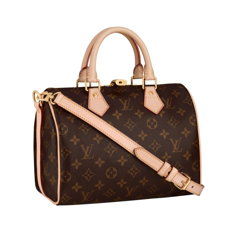 Louis Vuitton Speedy 25 Bandouliere Bag