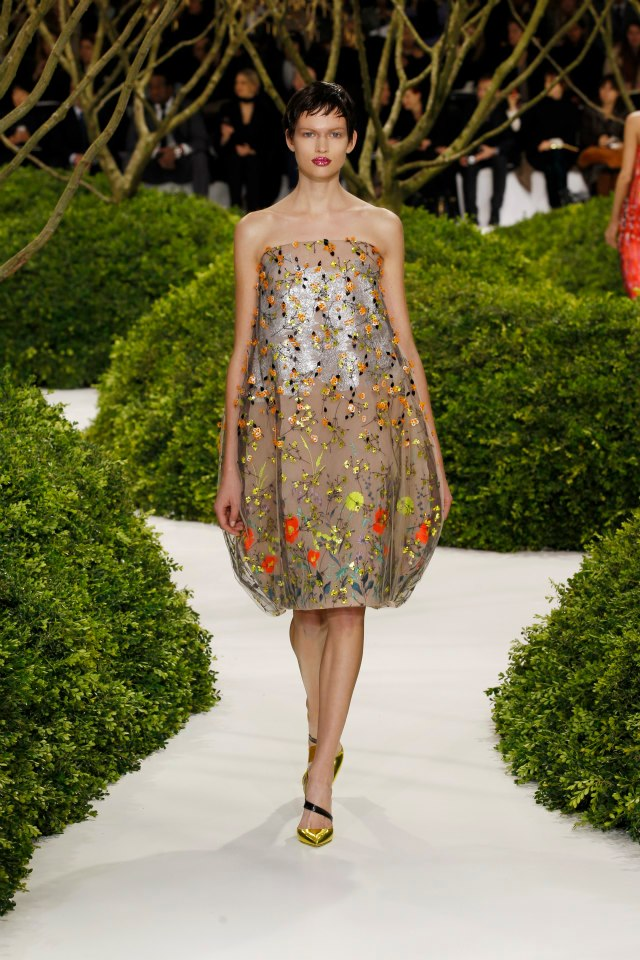 Dior Haute Couture Spring Summer 2013 Collection 8