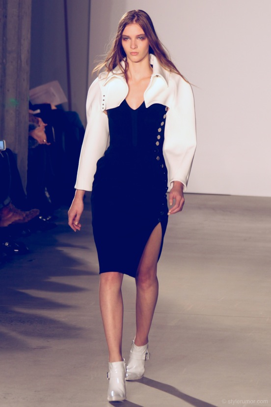 Altuzarra Fall Winter 2013 Collection 4