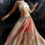 NC Latest Indian Ghunghroo Lehenga Sarees 2013 For Weddings (16)