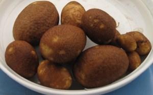 Free Russet Potatoes