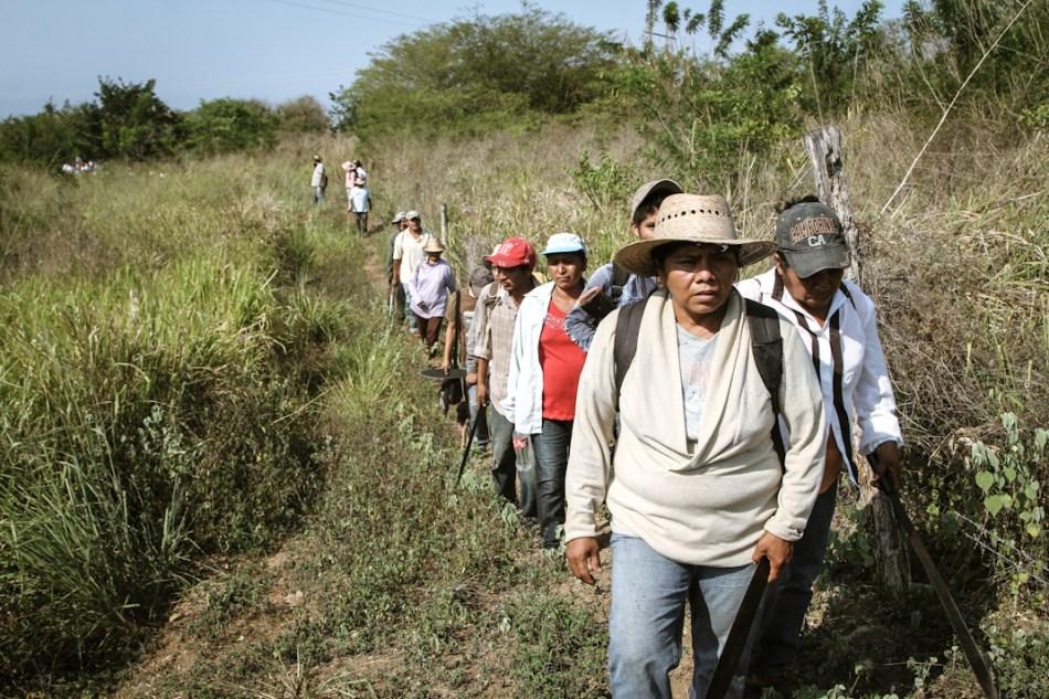 Reparto de tierras y reconstrucción de la comunidad en Ostula