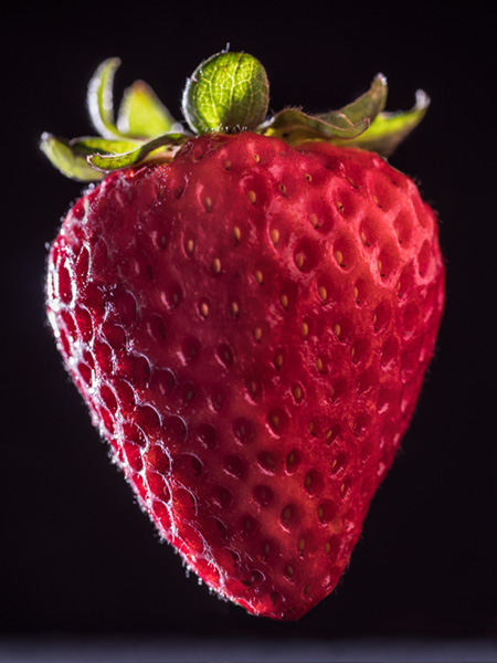 strawberry photo