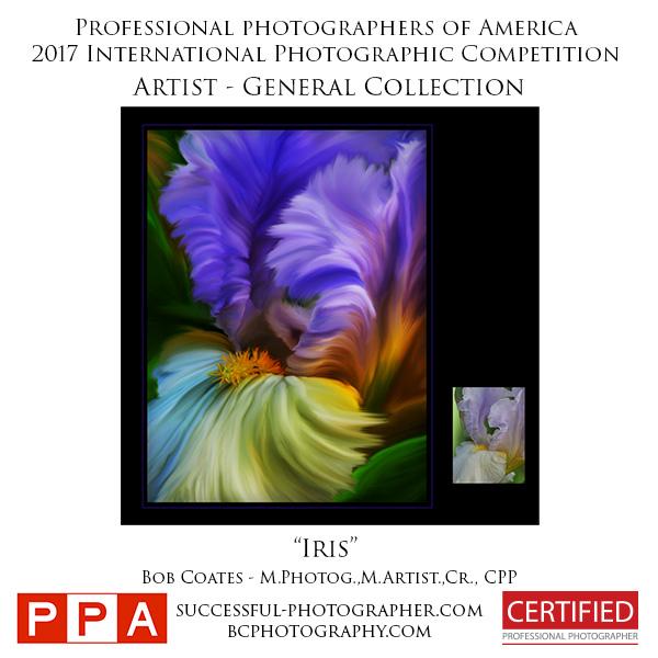 Iris artist submission