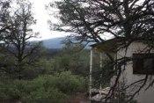 cabin-in-woods