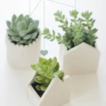 DIY // Clay Planters