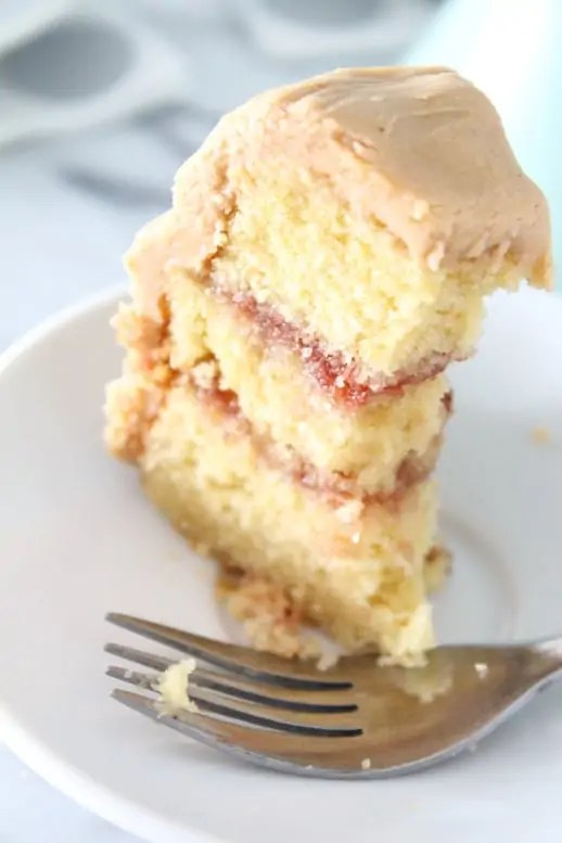 Peanut Butter & Jelly Cake - Recipe - Sugar & Cloth - Houston Blogger