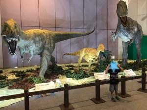 メガ恐竜展復元骨格