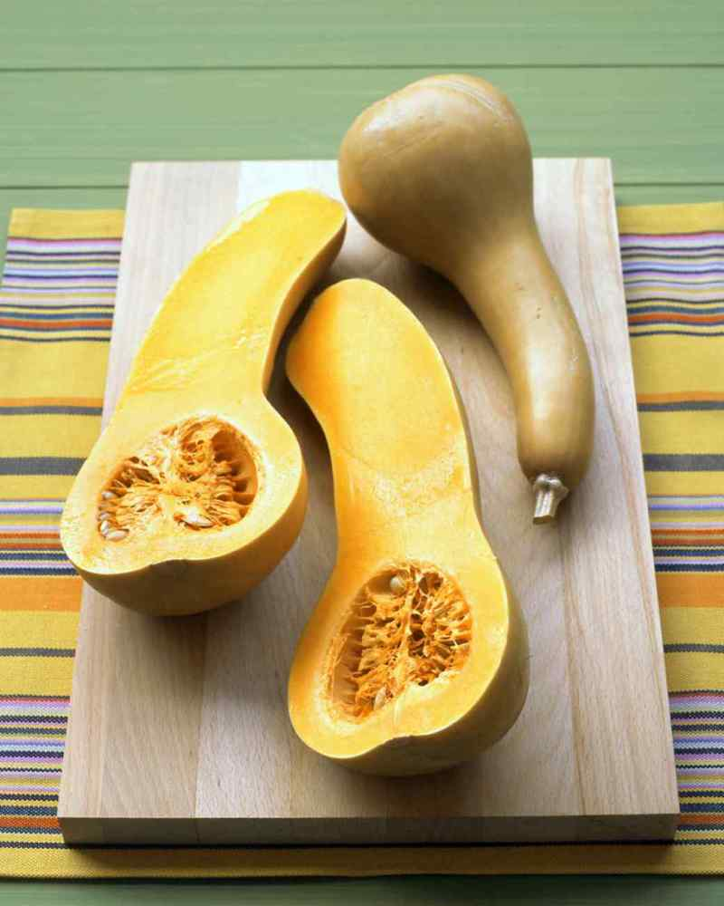 Large Of When To Pick Butternut Squash