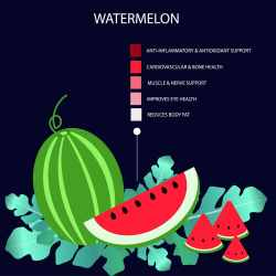 Masterly Vinegar Sumo Gardener How Long Do Cucumbers Last At Room Temperature How Long Do Cucumbers Last Watermelon Health Benefits How Long Does Watermelon Last On Vine