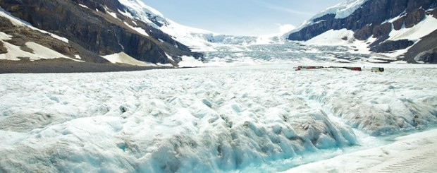 Columbia Icefields Tour
