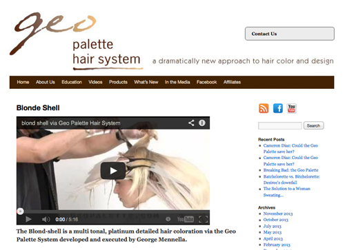 Geo Palette website design