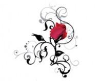 rose_190px_1