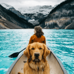 Couple Takes Dog Travelling With Them And The Pics Are Incredible