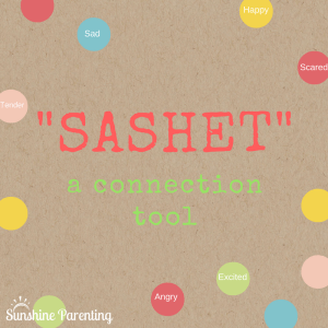"""""""SASHET"""": A Connection Tool"""