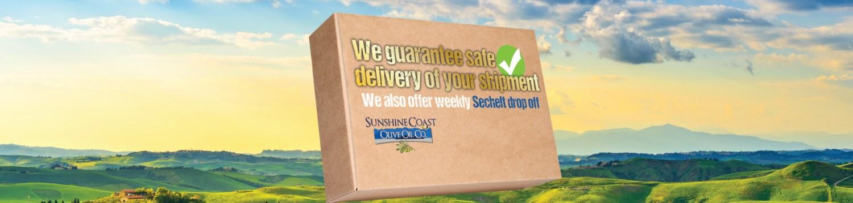 guaranteed-shipping-banner-2