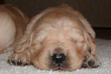 I need a nap!