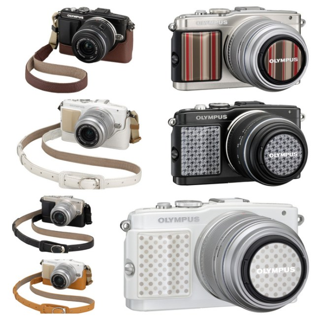 OLYMPUS PEN Lite E-PL5 Dress Up Accessories