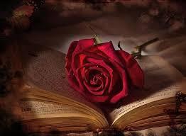 صور حب ورومانسية وعشق صور للمخطوبين والمتزوجين والمرتبطين بالحب (64)