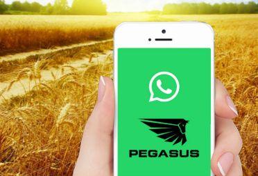 Pegasus se unió a Wahtsapp para mejorar la comunicación.