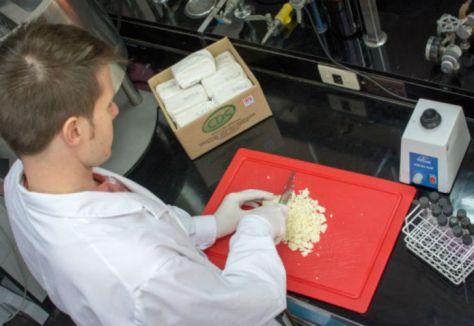 Resultado de la articulación entre el INTA y la empresa cordobesa Lácteos Capilla del Señor S.A., se desarrolló el primer queso argentino enriquecido con fitoesteroles y antioxidantes naturales. FOTO: INTA Informa.