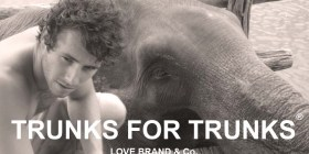 love-brand-save-elephants