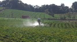CICA promueve buenas practicas agricolas