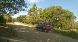 Invasion Parque nacional Corcovado