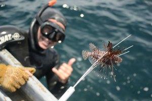 UCR Caribe sur ya cuenta con censo pesquero