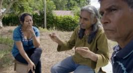 DEI invita a ver documental Guardianes del Bosque