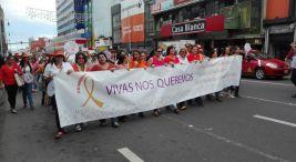 Marcha del Dia Nacional e Internacional de la Eliminacion de la Violencia contra las Mujeres2