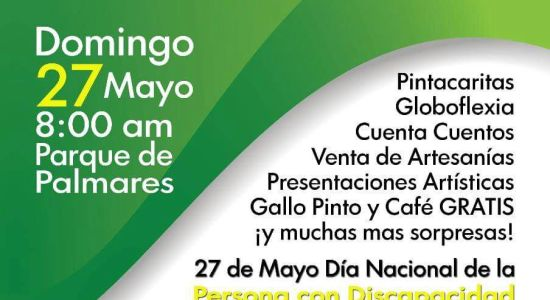 Feria de la Inclusion en Palmares